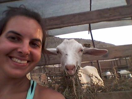 goat selfie!